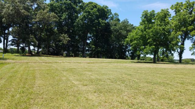 Wild Pear Tr, Dandridge, TN 37725 (#1067228) :: Venture Real Estate Services, Inc.