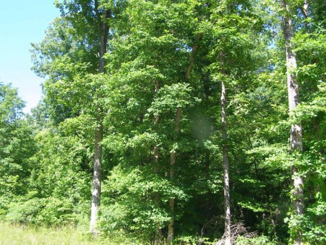 Stone Cliff Lane, Jamestown, TN 38556 (#1067315) :: Billy Houston Group
