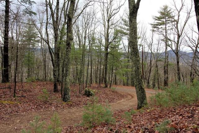 Lot 11 Little Mountain Way, Townsend, TN 37882 (#1067394) :: Venture Real Estate Services, Inc.