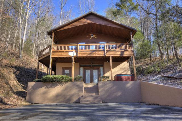 3535 Birds Creek Rd, Sevierville, TN 37876 (#1067414) :: Billy Houston Group
