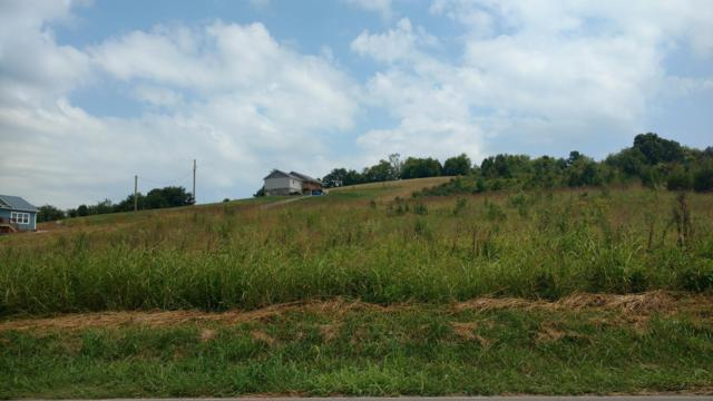 Kyker Ferry Rd, Kodak, TN 37764 (#1067436) :: Billy Houston Group