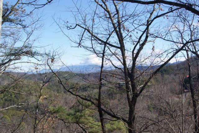Lot# 17 Lonesome Pine Way, Sevierville, TN 37862 (#1067451) :: Billy Houston Group