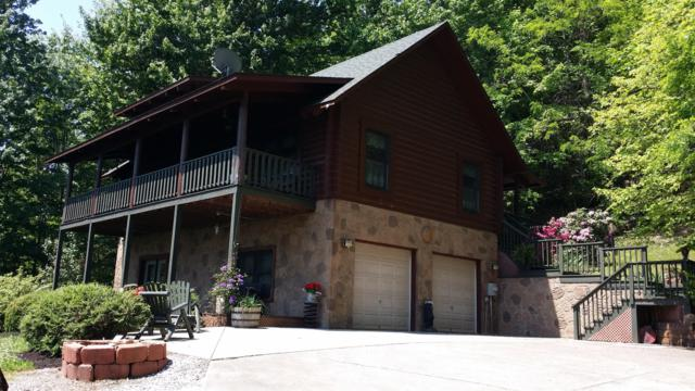 241 Settlers Point Rd, New Tazewell, TN 37825 (#1067573) :: Shannon Foster Boline Group