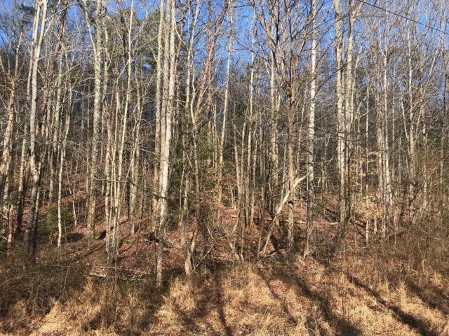 Lot 1 Turkey Pen Branch Rd, Maryville, TN 37803 (#1067624) :: Billy Houston Group