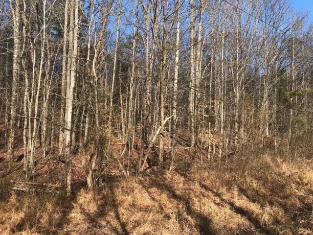 Lot 2 Turkey Pen Branch Rd, Maryville, TN 37803 (#1067628) :: Billy Houston Group