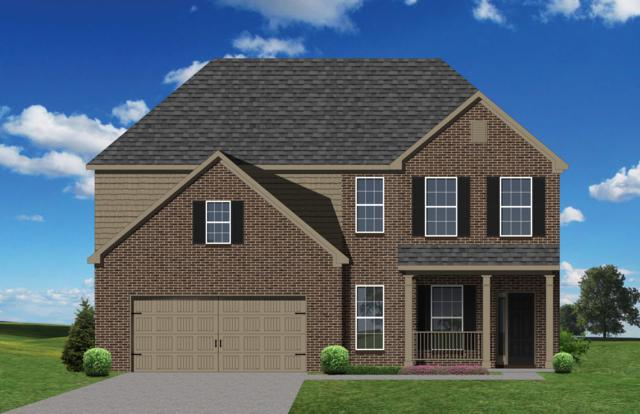 1914 Wooded Mountain, Knoxville, TN 37922 (#1067641) :: Billy Houston Group