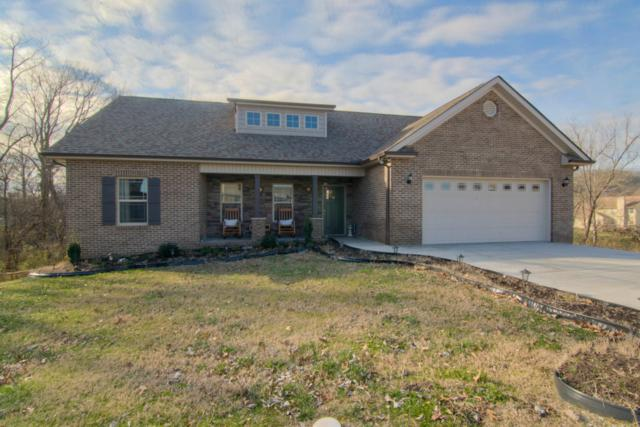 505 Greystoke Lane, Knoxville, TN 37912 (#1067673) :: Billy Houston Group