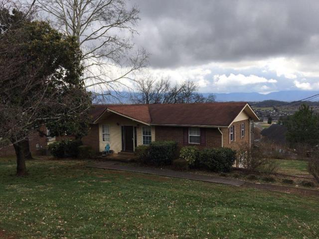 217 Cherokee Tr, Seymour, TN 37865 (#1067750) :: Billy Houston Group
