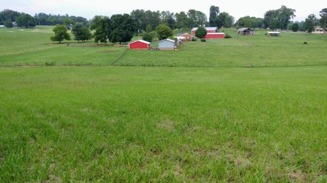 5616 Evergreen Farms Lane, Greenback, TN 37742 (#1067781) :: Billy Houston Group
