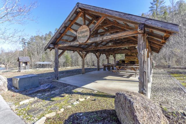 144 Anatole Pass, Townsend, TN 37882 (#1067793) :: Billy Houston Group