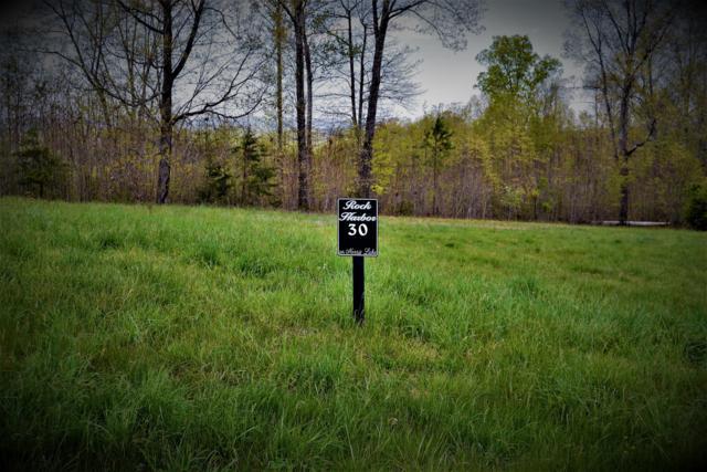 Lot # 30 Topaz Lane, New Tazewell, TN 37825 (#1067810) :: Billy Houston Group