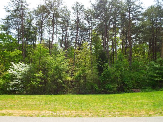 Lot 112 Indian Shadows Drive, Maryville, TN 37801 (#1067817) :: Billy Houston Group
