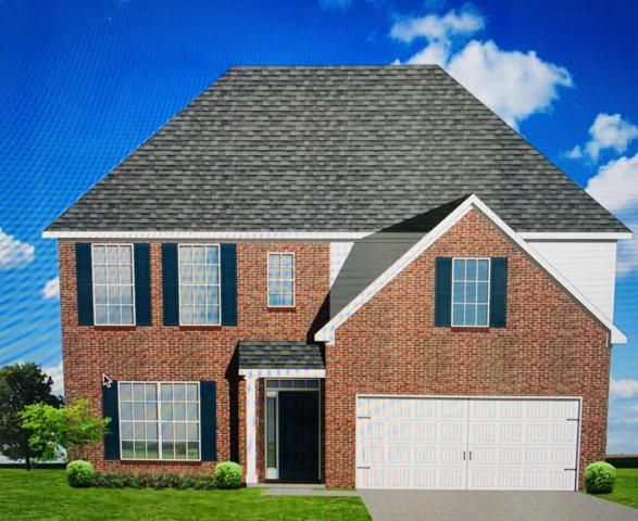 1830 Shadyside Lane, Knoxville, TN 37922 (#1067884) :: Billy Houston Group