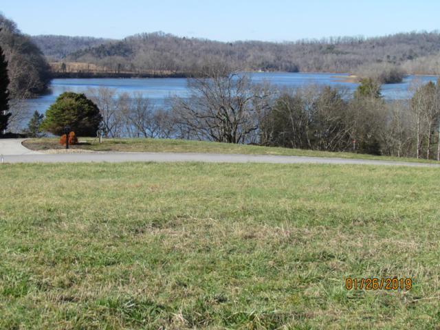 Marble View Drive Drive, Kingston, TN 37763 (#1067977) :: Billy Houston Group