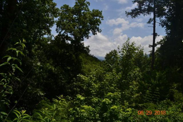Tolliver Lot 32 Tr, Townsend, TN 37882 (#1068009) :: Billy Houston Group