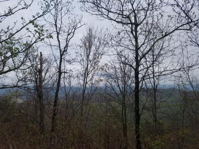 Lot 29 Laurel Top Way, Gatlinburg, TN 37738 (#1068024) :: Billy Houston Group