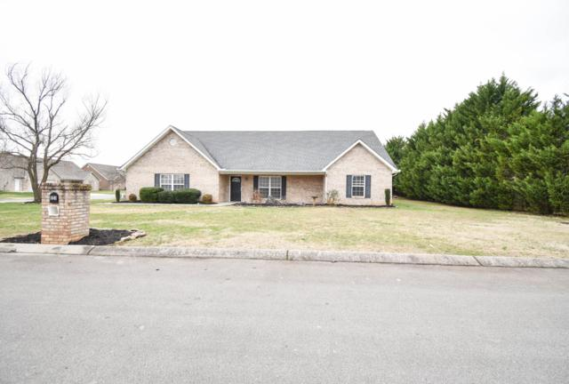 1441 Bens View Court, Maryville, TN 37803 (#1068039) :: Billy Houston Group
