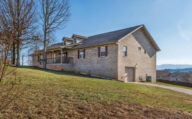 1315 Old Red Ln Lane, Sevierville, TN 37876 (#1068191) :: Billy Houston Group