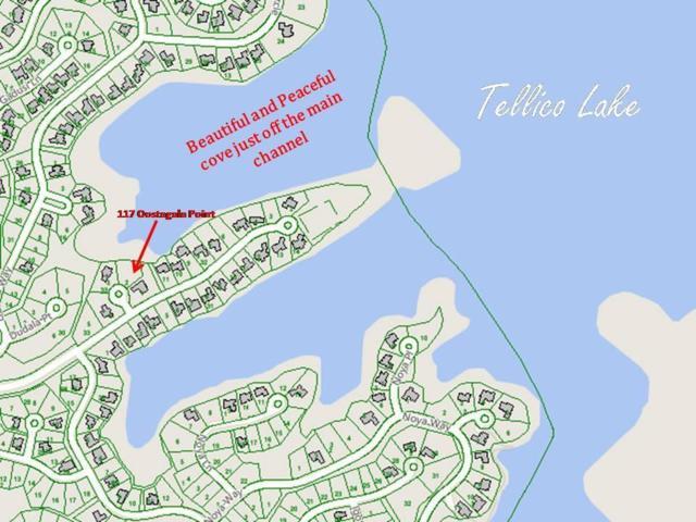 117 Oostagala Point, Loudon, TN 37774 (#1068259) :: Billy Houston Group