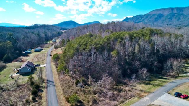 Lot 26 English Fields Drive, Newport, TN 37821 (#1068266) :: Billy Houston Group