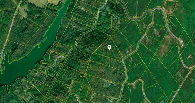 178 Old Ridge Rd, Kingston, TN 37763 (#1068380) :: Shannon Foster Boline Group