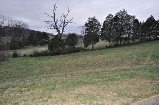 Lot 15 Tradition Lane, Sevierville, TN 37862 (#1068411) :: Billy Houston Group