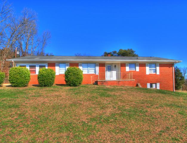 156 Cedar Crest Lane, Friendsville, TN 37737 (#1068416) :: Catrina Foster Group