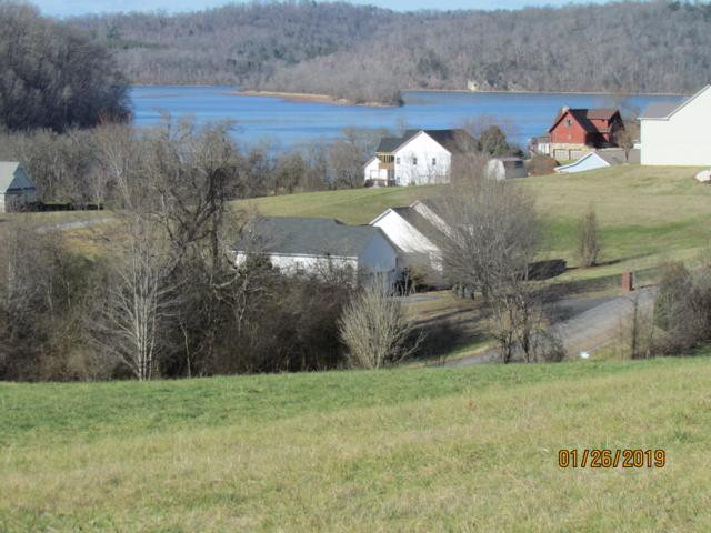 Marble Bluff Drive, Kingston, TN 37763 (#1068446) :: Shannon Foster Boline Group
