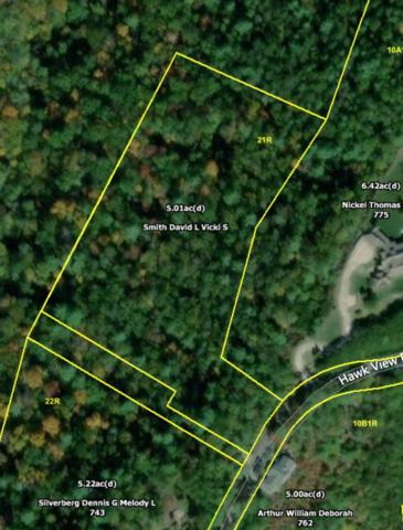 Hawk View Rd, Townsend, TN 37882 (#1068460) :: Billy Houston Group