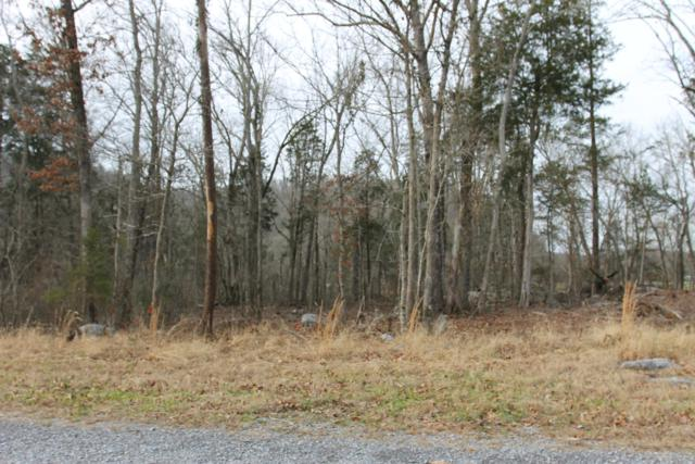 Lot 2 French Broad River Rd, Seymour, TN 37865 (#1068532) :: Venture Real Estate Services, Inc.
