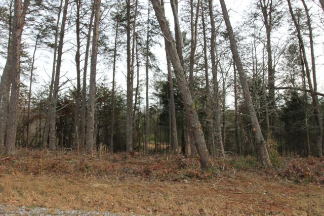 Lot 3 French Broad River Rd, Seymour, TN 37865 (#1068551) :: Venture Real Estate Services, Inc.