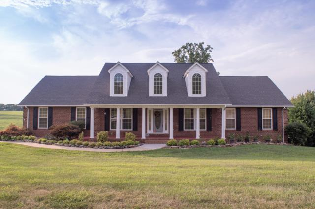 5323 Three Bars Lane, Seymour, TN 37865 (#1068591) :: Billy Houston Group