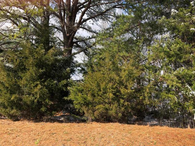 Nunnehi Tr, Vonore, TN 37885 (#1068613) :: The Creel Group   Keller Williams Realty