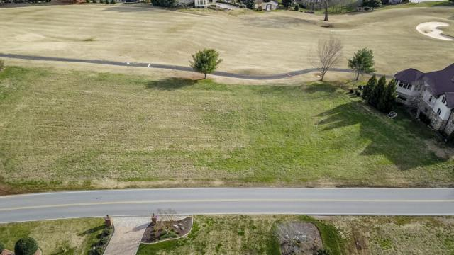 820 Rarity Bay Pkwy, Vonore, TN 37885 (#1068646) :: Shannon Foster Boline Group