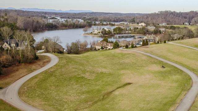 98 Morning Dove Drive, Vonore, TN 37885 (#1068647) :: Billy Houston Group