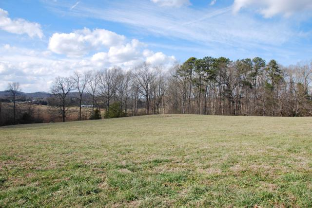 5753 Sawyers Green Tr, Seymour, TN 37865 (#1068815) :: Billy Houston Group