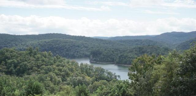 Lot 723 Broadmooore Lane, New Tazewell, TN 37825 (#1068848) :: Billy Houston Group