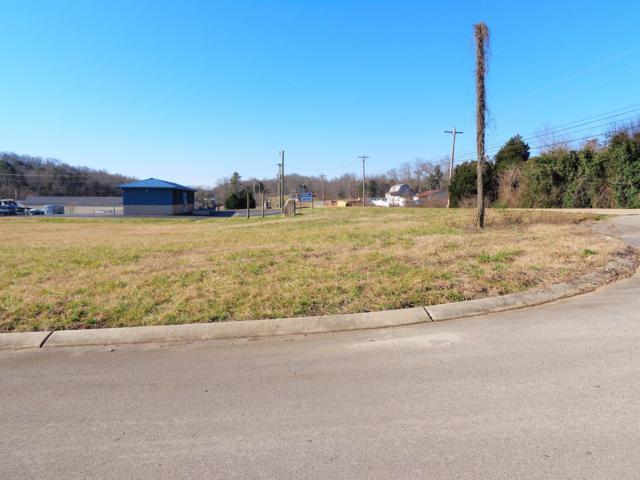 3025 Cecil Hatcher Drive, Louisville, TN 37777 (#1068917) :: The Cook Team