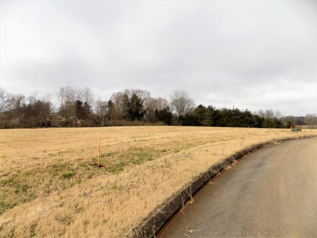 Lot #4 Stone Leigh Drive, New Market, TN 37820 (#1068989) :: Billy Houston Group