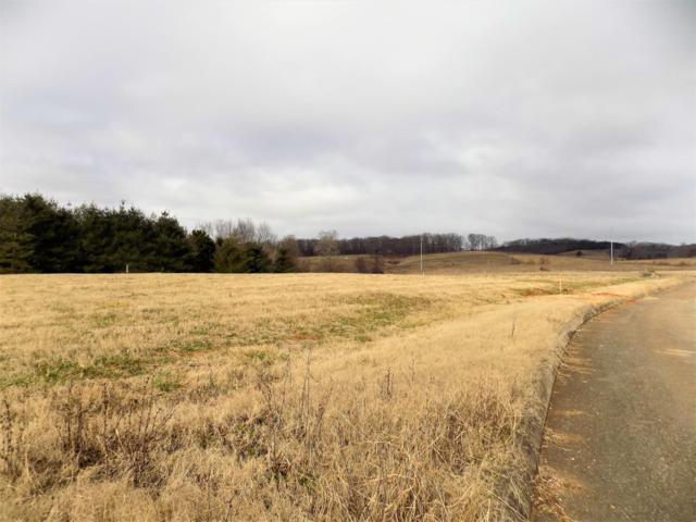 Lot #5 Stone Leigh Drive, New Market, TN 37820 (#1068992) :: Billy Houston Group