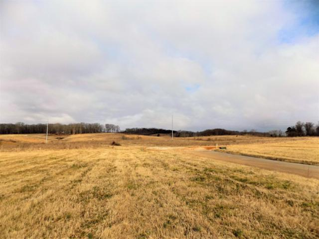 Lot #7 Stone Leigh Drive, New Market, TN 37820 (#1068994) :: Billy Houston Group