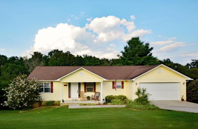 1170 Eagle View Drive, Kodak, TN 37764 (#1069027) :: Billy Houston Group