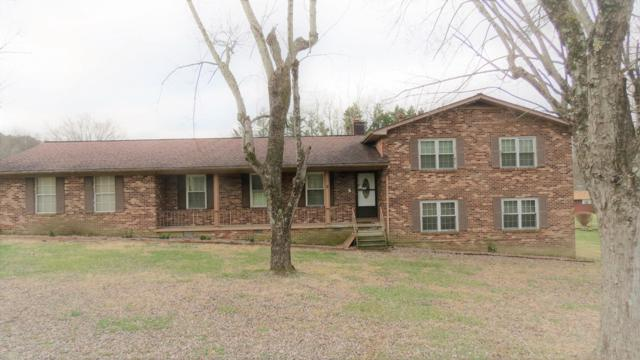 1324 Mimosa Drive, Louisville, TN 37777 (#1069111) :: Billy Houston Group