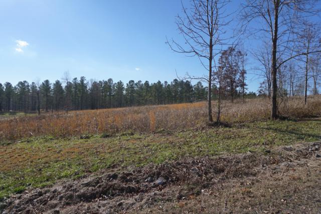 Wilderness Drive, Vonore, TN 37885 (#1069174) :: Adam Wilson Realty