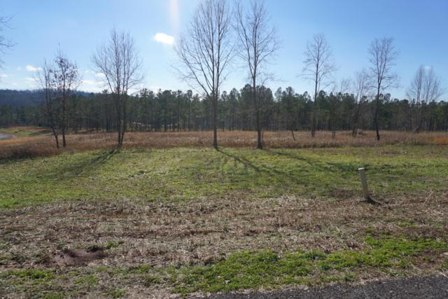 Overlook Way, Vonore, TN 37885 (#1069176) :: Venture Real Estate Services, Inc.