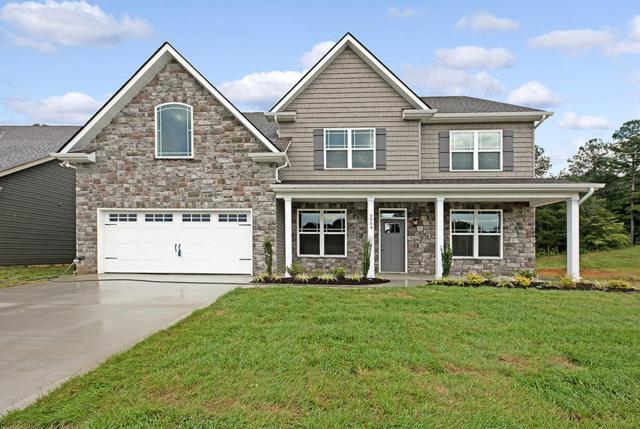 3020 Spencer Ridge Lane, Knoxville, TN 37931 (#1069222) :: Billy Houston Group