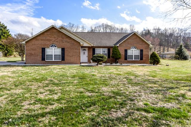 824 Alley Dr. Drive, Friendsville, TN 37737 (#1069250) :: Catrina Foster Group