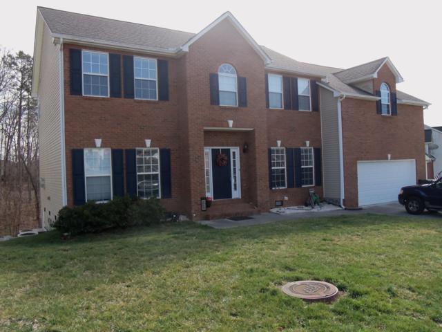 3000 Oakwood Hills Lane, Knoxville, TN 37931 (#1069353) :: Billy Houston Group