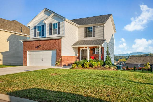 2835 Southwinds Circle, Sevierville, TN 37876 (#1069365) :: Billy Houston Group