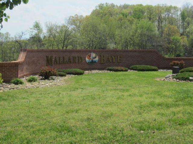 Mallard Baye, Rutledge, TN 37861 (#1069494) :: Billy Houston Group
